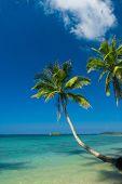 Idyllic Island Green Getaway