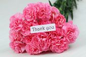 Thank you card with pink carnations