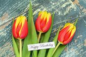 Happy birthday card with red and yellow tulips on rustic wooden surface