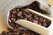 Coffee beans on wooden scoop, close up
