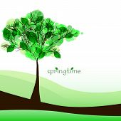 Abstract Nature Background With Tree. Beautiful Spring