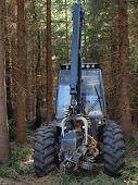 forest machine logging South Bohemia Czech Republic