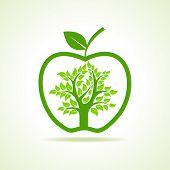 Tree inside the apple- vector illustration