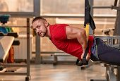fitness TRX man workout