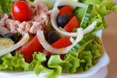 Spring vegetable salad with tuna and olive oil
