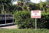 Beware of Alligator Sign