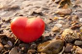 Red Shape Heart  On Rock And Shell