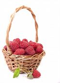 Raspberries In A Basket And A Few Berries On A Branch On A White Background.