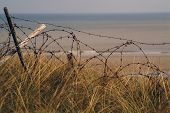 Barbed Wire From 2Nd. World War D Day Landings Left In Place At Utah Beach Normandy France