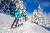 pic of down jacket  - Young woman in down jacket hiking on snow shoes in cold winter scenery - JPG