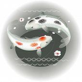 stock photo of koi tattoo  - Vector illustration of koi carps couple in water - JPG