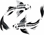 stock photo of koi tattoo  - Artistic vector illustration of koi carps couple in water - JPG