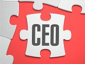 stock photo of missing  - CEO  - JPG