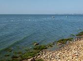 foto of azov  - Taganrog bay in Azov sea near the Taganrog city Russia  - JPG