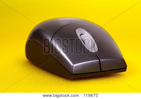 Computer Mouse poster