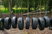 Playground Tire Bridge Swing