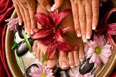 De la mujer francesa manicura y pedicura