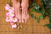Pedicured female feet with orchid