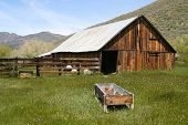 Taken in the Sierras - a rustic, old, abandoned barn. Rich with old wood and overgrown grass.
