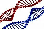 DNA - 3d render