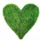 Постер, плакат: Сердце из травы