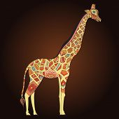 Постер, плакат: Beautiful adult Giraffe in boho Hand drawn Illustration of ornamental giraffe Colored giraffe on o