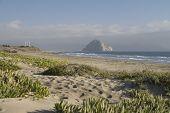 Vista desde las dunas a la roca del Morro