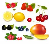 Group of cranberries, blueberries, cherries, raspberries and exotic fruit. Photo-realistic vector il