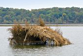 stock photo of duck-hunting  - Hunters duck blind in a lake on an autumn day - JPG