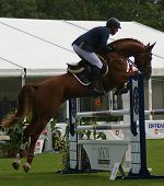 Rene Tebbel riding Stakko