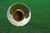 Tuba Lying On The Grass