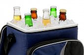 Six assorted beer bottles in a soft sided cooler or ice chest. Close up in horizontal format isolate