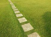 Tile path through lush green grass
