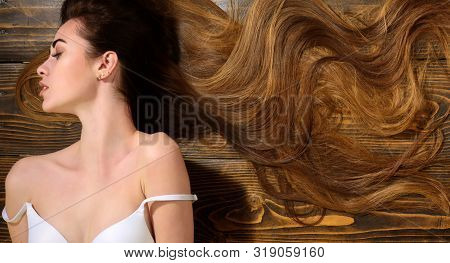 poster of Woman With Beautiful Long Hair On Wooden Background. Long Hair. Fashion Haircut. Long Healthy Hair