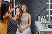 Professional Makeup And Hairstyle Artist Making Makeup For The Bride. Professional Cosmetics poster