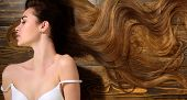 Woman With Beautiful Long Hair On Wooden Background. Long Hair. Fashion Haircut. Long Healthy Hair poster
