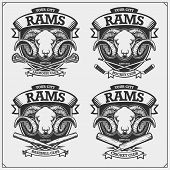 Cricket, Baseball, Lacrosse And Hockey Logos And Labels. Sport Club Emblems With Rams. Print Design  poster