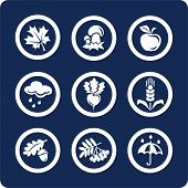 Seasons: Autumn icons To see all icons, search by keywords: