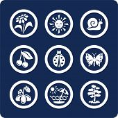 Seasons: Summer icons To see all icons, search by keywords: