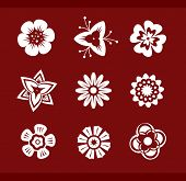 Vector design elements: Flowers (p.1) To see all design elements, search by keyword: