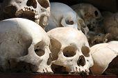 Skullls
