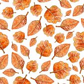 Autumn Seamless Pattern. Hand Drawn Watercolor Illustration. Leaves Hand Drawn Sketch. Autumn Patter poster