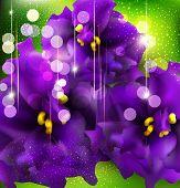 Hintergrund mit romantischen Veilchen auf einem grünen Hintergrund