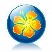 Aloha glossy icon