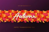 Autumn Background, Banner, Poster Or Flyer Design. Thanksgiving Day Vector Illustration With Bright  poster