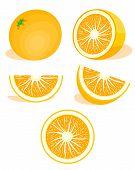 Orange,citrus Set. Modern Flat Cartoons Style Vector Illustration Icons. Isolated On White Backgroun poster