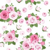 Seamless background with pink roses on white. Vector illustration.