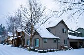 Snow Covered Homes