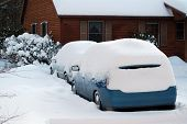 Cars Covered By Snow