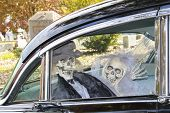 Skeleton Groom And Bride